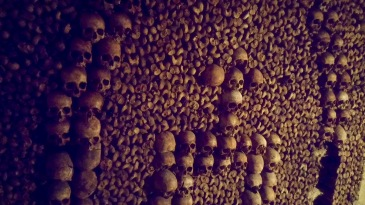 Rob C - Catacombs in Paris