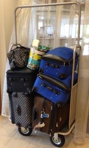 2014 MOR Cruise Luggage for three girls